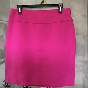 NWOT lined skirt with side zip.